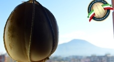 Provolone del monaco Dop l 3 dicembre arriva il Gran Galà