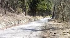 """Quella strada del Bellunese che somiglia più a un """"sentiero di guerra"""""""
