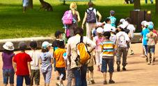 La fine delle gite scolastiche: viaggi tagliati del 40 per cento