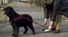 Scivola sugli escrementi del cane (non raccolti dal padrone) e finisce in ospedale