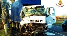 Il camion dopo il violento impatto sulla pianta