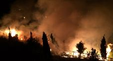 Ancona, vasto incendio di sterpaglie Le fiamme tra Posatora e Palombella