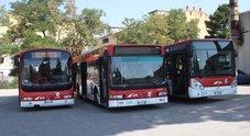 Benevento, Amts solo un'offerta per i trasporti