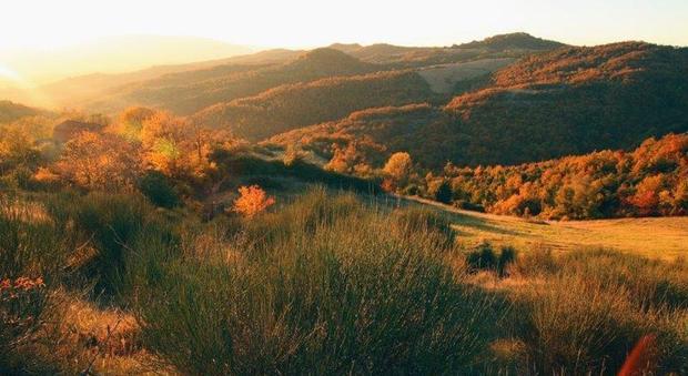 Castello di Petroia - Foliage