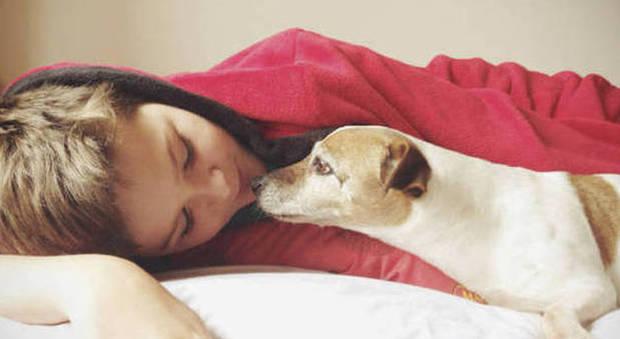 """Baci e leccatine dai cani, l'allarme dei medici: """"Ecco cosa può succedervi"""""""