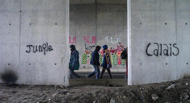 Migranti, al via la costruzione del muro a Calais