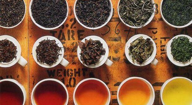 Un tè al giorno diminuisce i rischi di demenza del 50%