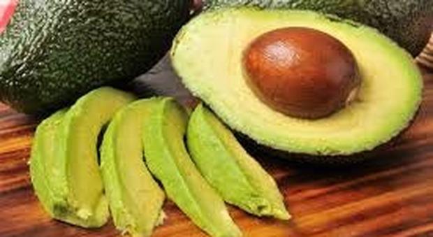 Avocado, scudo contro glicemia, colesterolo e pressione alta