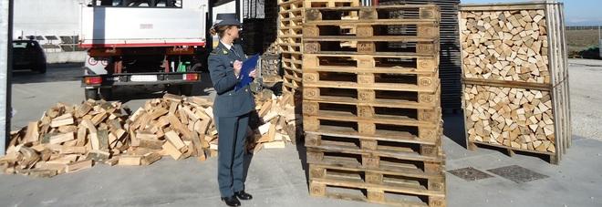 Evasione da 10 milioni per una ditta di legnami scoperta dalla Gdf di Caorle