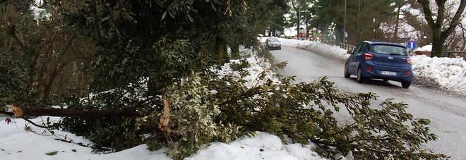 Neve e terremoto, ancora tante frazioni al buio Salvataggio sui Sibillini. Scuole chiuse fino al 21