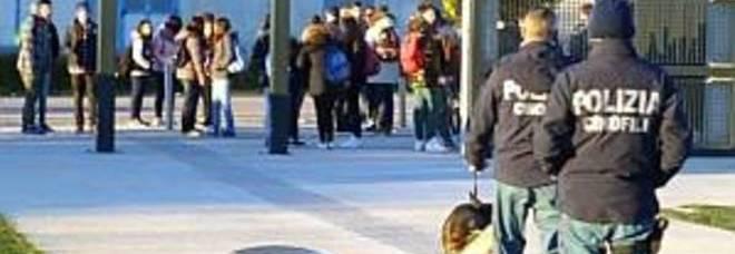L'operazione antidroga della polizia di Pordenone:  controlli con i cani