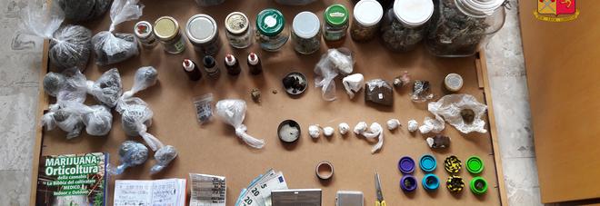 Ancona, coltivava in casa la cannabis Arrestato un barman di 28 anni