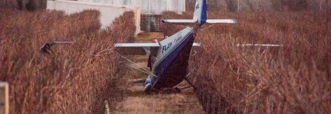 L'aereo caduto a Vidor