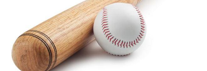 Quanto costano la palla e la mazza da baseball? Il rompicapo che manda in crisi metà Harvard