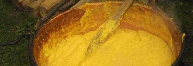 """""""La polenta può essere un alimento tossico"""", ecco l'allarme choc dei ricercatori del Cnr"""