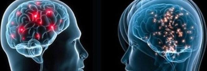 Dalla paura al sesso, così il cervello soffoca i nostri istinti