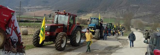 La protesta dei produttori di lenticchie