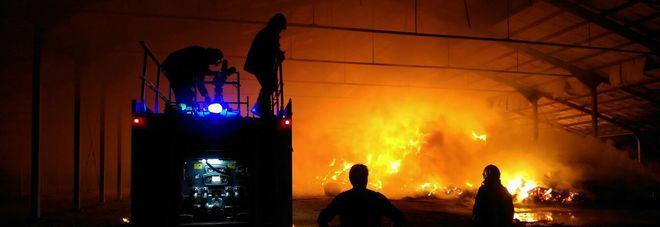 Pauroso incendio devasta una stalla: in fumo mille rotoballe di fieno