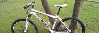 «Bellissima bicicletta vendesi». Ma il legittimo proprietario la riconosce: ladro nei guai
