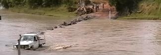 Tenta di attraversare un fiume, sbranato da un coccodrillo