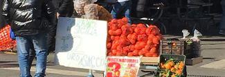 A piazzale Flaminio il mercato improvvisato: pacchi di noci vendute a tre euro