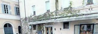 Campo de' Fiori, la storica quercia ricomprata dai macellai: era stata abbattuta perché malata