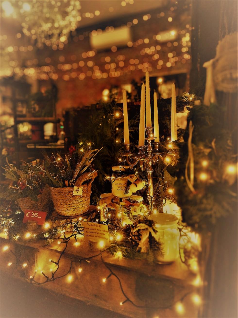 Luci_Frida's Italian Flower Stores_Via Palazzo 15