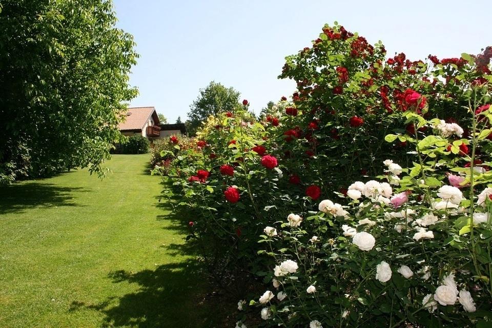 I giardini privati in friuli venezia giulia il - Giardini privati foto ...