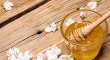 Il maltempo mette in ginocchio gli apicoltori niente miele d'acacia