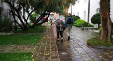 Case «per i veneziani» comprate e affittate ai turisti: 270 euro a notte