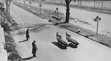 """""""Volpe argentata Event"""": ricordando Pietro Taruffi. Il 25 maggio 3^ edizione della giornata dedicata al pilota"""