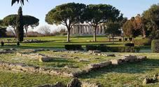 Paestum celebra il «Tartufo bianchetto» dal sapore di mare