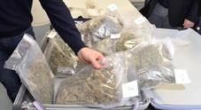 In porto arrivano 3 tonnellate di droga: 18 ordinanze di custodia cautelare