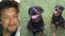 Azzannato al volto dai due rottweiler  della compagna nel giardino di casa,  Massimo muore dissanguato