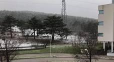 Maltempo: primi fiocchi di neve sul Carso ma è solo una spolverata