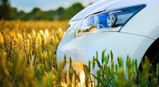 Lotta alle emissioni, le auto delle flotte non temono rivali. Differenza netta rispetto al resto del mercato