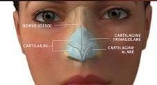 Palpebre e naso: ecco le nuove frontiere della chirurgia plastica