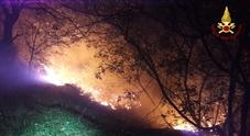 Bosco a fuoco: in cenere 4500 mq  Fiamme alimentate dalla Bora