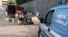 Pordenone.L'autista del furgone diretto in Romania era un trafficante di coca ricercato dal 2014