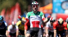 Tour Down Under, Viviani vince in Australia