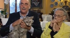 Paolo Brosio sotto choc il gatto perde sangue in diretta televisiva