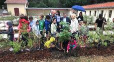 Parco di Miramare: addio degrado,  aiuole fiorite e 1200 nuove piante