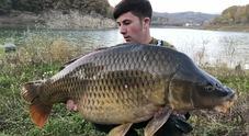 Carpa da record: pesa 25 chili, a pescarla nel lago è stato un 17enne