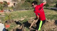 Moto Gp, il campione Danilo Petrucci alle prese con il giardino