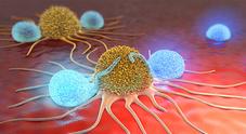 Napoli, pronto un nuovo test per fotografare le mutazioni del cancro