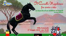Napoli, il ritorno del cavallo napoletano nella Villa Comunale