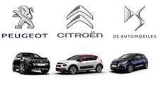Gruppo PSA (Citroen, DS, Peugeot): inizia la vendita di automobili su Internet in Francia