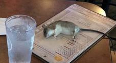 Al ristorante per assistere alla partita del Mondiale femminile, un topo le cade sul tavolo. La foto fa il giro del web