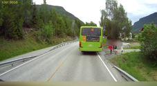 Come non si attraversa la strada: incredibili riflessi di un camionista evitano la tragedia