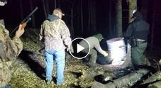 Orso per due giorni con la testa intrappolata in un barile: i cacciatori lo salvano così VIDEO